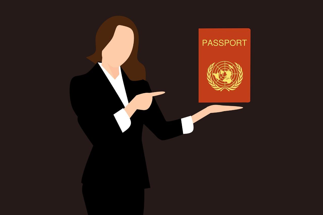 מדריך לדרכון